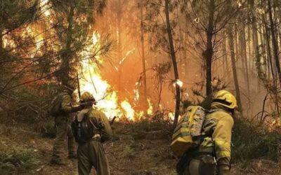 JUMA presta su apoyo en el gran incendio de Sierra Bermeja